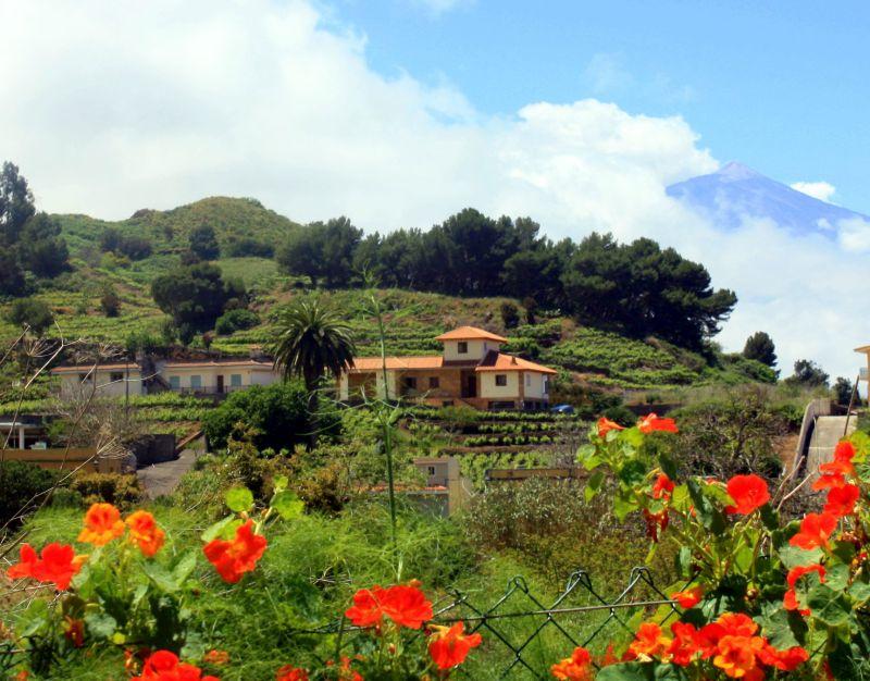 Camino Real called Calle Real La Matanza Tenerife also known in this spot as circular road of Los Laguneros.