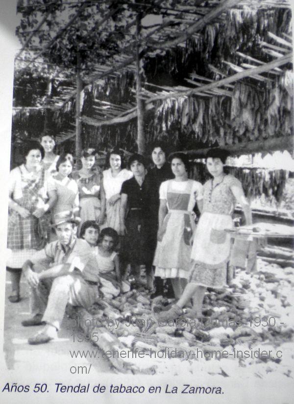 Tenerife Tobacco shop at La Zamora Realejos of 1950