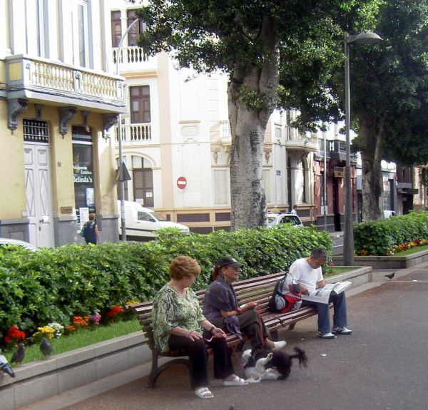 The Rambla a meeting place for people and dogs.