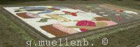Flower carpet with abstract art