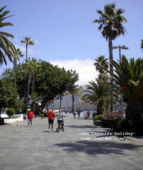 Avenida Colon near Martianez beach