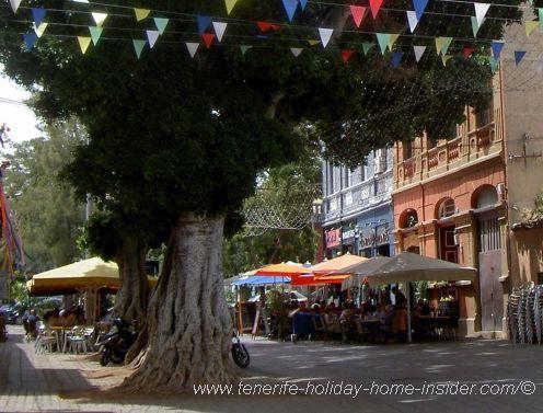 Bars in Tenerife in one spot and more in La Noria.