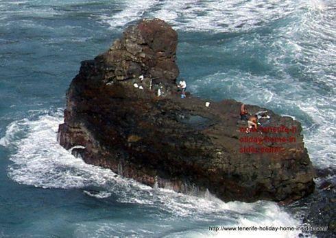 Beach for fishing Playa de los Roques by Hotel Maritim on the border of Realejos and Puerto de la Cruz.