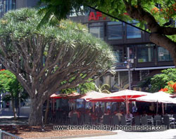 Bohemian Club Cafe El Aguila Santa Cruz Tenerife
