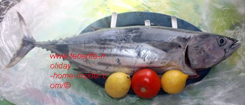 A Bonito fish bought as one piece of 3,45kg for about Euro 10 at Mercadona Realejos. The price was Euro 2,95 per kg on August 26 of 2017.