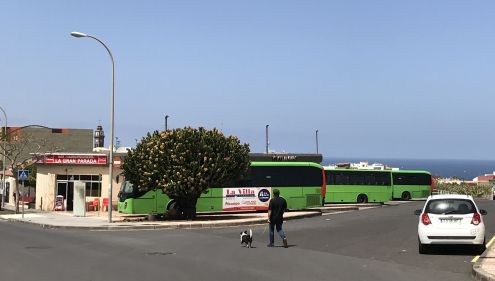 Bonobus now Tenmas Traslado discounts available by using the green Titsa buses