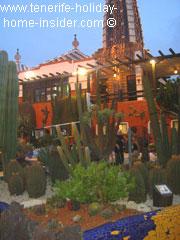 Cactus landscaping design Arona Tenerife