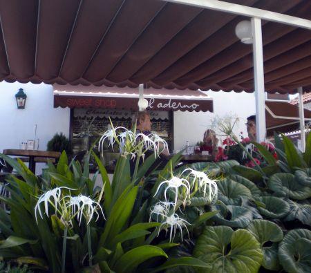 Cafe El Aderno Puerto de la Cruz La Paz with shop.