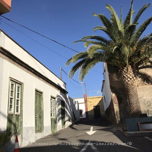 Camino El Paso with an old Canary palm where it faces a small park by a Barranco gorge