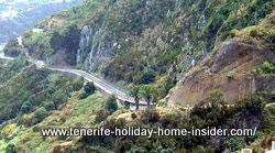 Camino Royal Tenerife nature of endemic Macaronesia.
