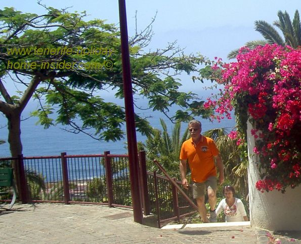 Carretera Taoro by the former Casino Taoro where flowering trees and Bougainvilleas grow by ocean views.