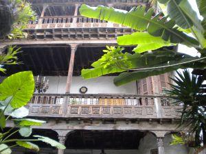 Casa de los Balcones La Orotava green plant contrast