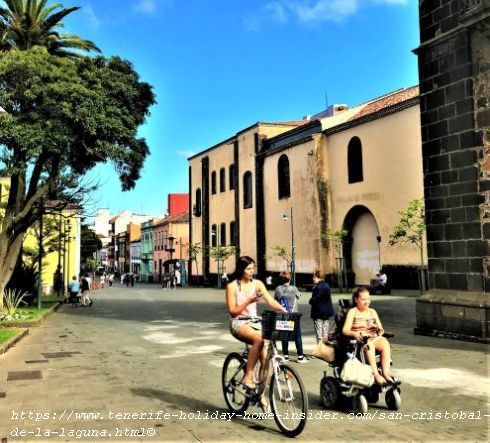 A cyclist and wheelchair commuter on Plaza de la Concepción of la Laguna. By the way, cats seem to stay inside in this suburb as none are in the streets