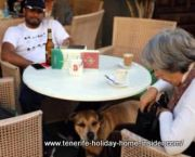 Dog friendly vacation bar service Cafe Ebano