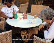 Dog friendly vacation bar service Cafe Ebano