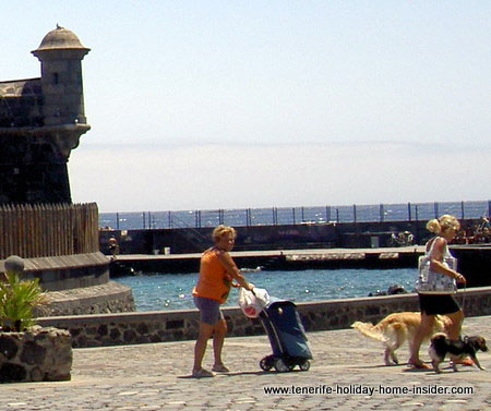 Dog holidays at Parque Maritimo beach