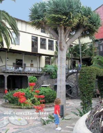 Eating out in Tenerife Patios at Casa Lercaro La Orotava of Kui center with many options