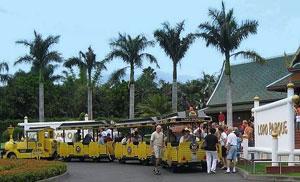 Entertainment in Tenerife by a mini train