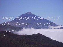 Falcon habitat Canadas del Teide tenerife spain