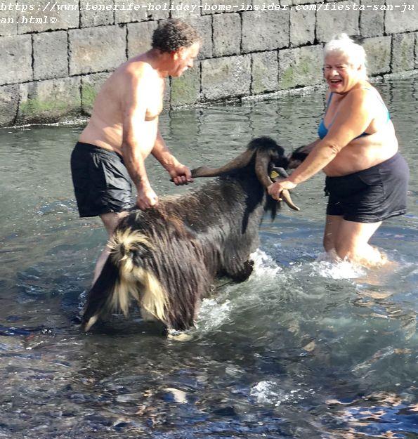 Fiesta San Juan goat bath in 2019 where women now feature too