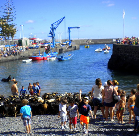 Fiesta San Juan with little excited kids having beach fun