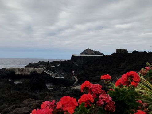 Former eyesore of the black Lava Caleton in Garachico which now has contrasting red Geraniums