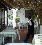 Garden terrace within the garden patio Restaurant La Papaya
