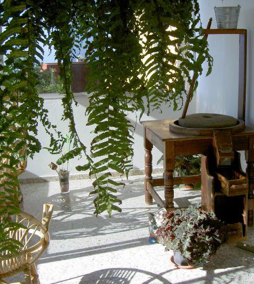Gofio grinder of private Tenerife collections at Icod de los Trigos of Los Realejos.