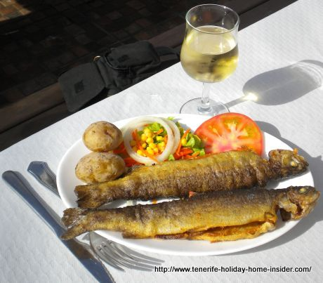 Grilled trout with potatoes and salad