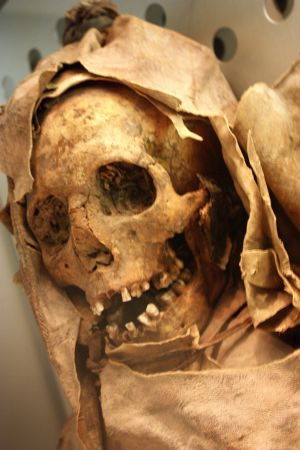 Guanche mummy with skull of well visible teeth.