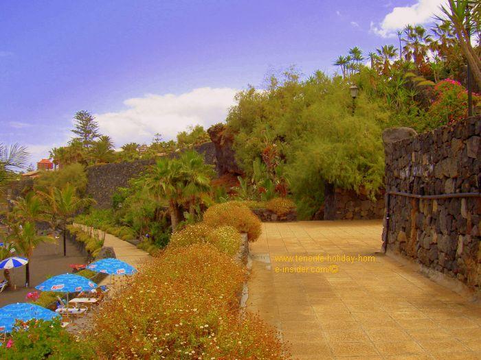 Hanging gardens beach at Punta Brava.