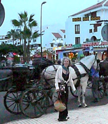 Horse carriage Arona Tenerife at dusk