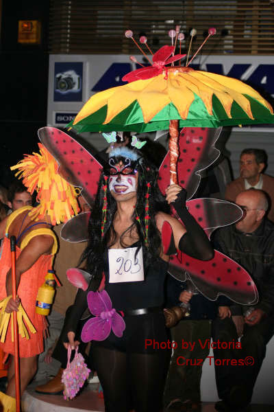 Insect carnival costume of gay marathon Puerto Cruz