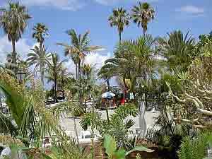 Bird eye view to Lido Martianez from Hotel Vallemar Puerto Cruz