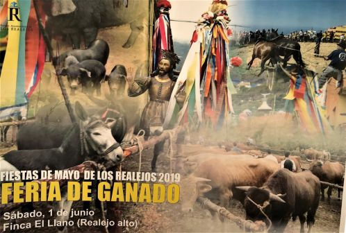 Livestock fair Los Realejos Feria de Gañado at Finca El Llano from 10 a.m. onward on Saturday, June 01, 2019 with rural shows and other activities