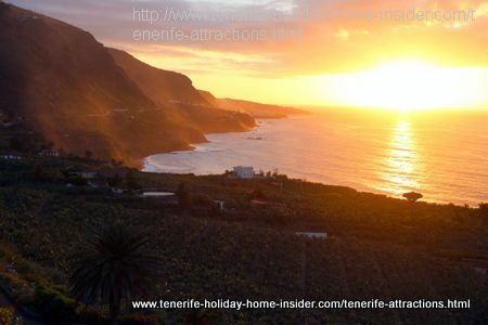Los Realejos banana plantation   sun set San Pedro Rambla del Mar Tenerife