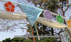 may celebrations Santa Cruz banner with  streamers