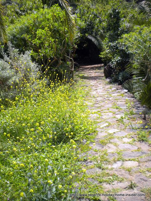 Mirador San Pedro Tenerife Spring at the heart of the Rambla.