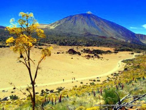 Mount Teide weather in Spring