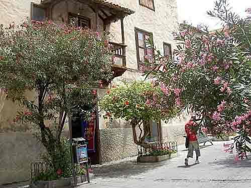 Former Museum Iriarte in Calle Iriarte Puerto de la Cruz.