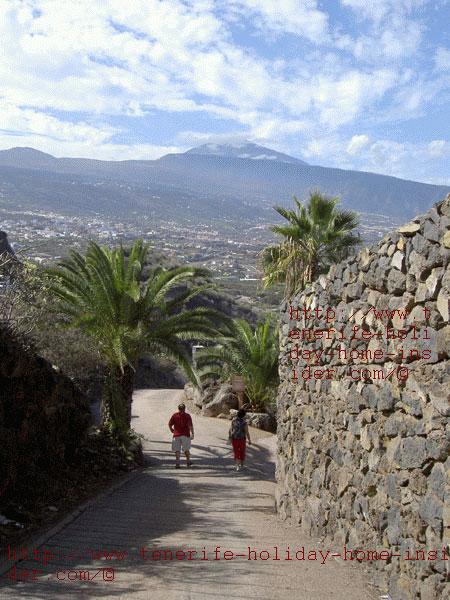 Orotava Valley Tenerife