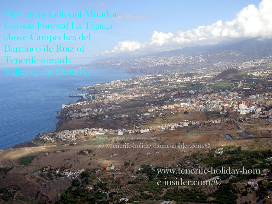 Orotava Valley seen off Corona Forestal Paraglider Piste