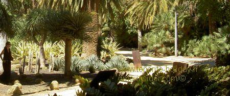 Parque Garcia Sanabria Cactus Garden