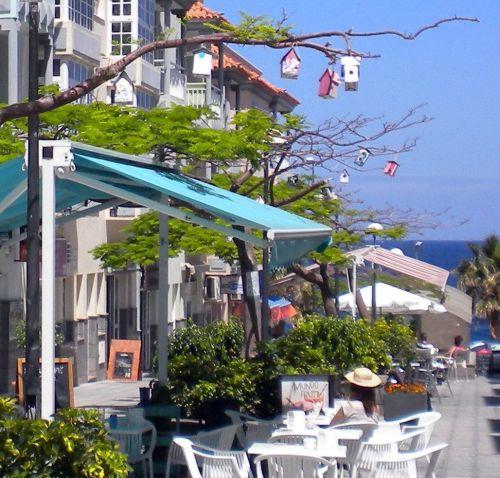 Plan Bakery Tenerife Vegan Cafe of Candelaria with street terrace.