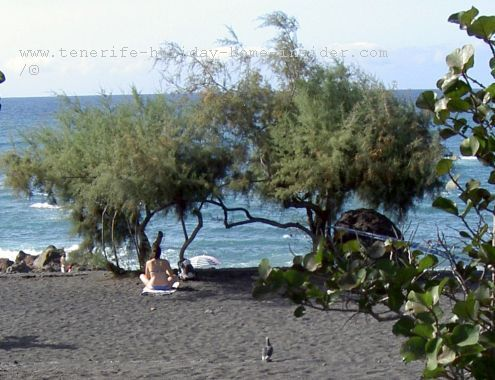 Playa Jardin beach with wild and wonderful section for privacy