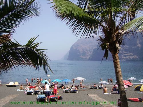 Playa Los Gigantes beach with Palms