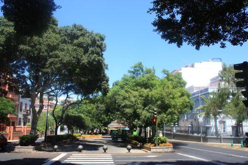 Rambla Santa Cruz the most important and more than an avenue.