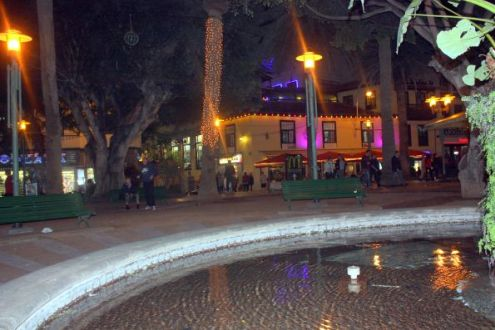 Reminder of legendary shrimp pond of Puerto de la Cruz by a night view