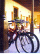 Rent a bike from Hotel La Quinta Roja Tenerife