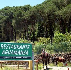 Restaurante Aguamansa on the way from La  Orotava to Teide.